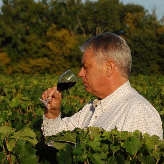 vignes à vendre france
