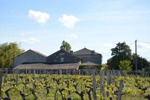 Vente Propriété viticole Bordeaux